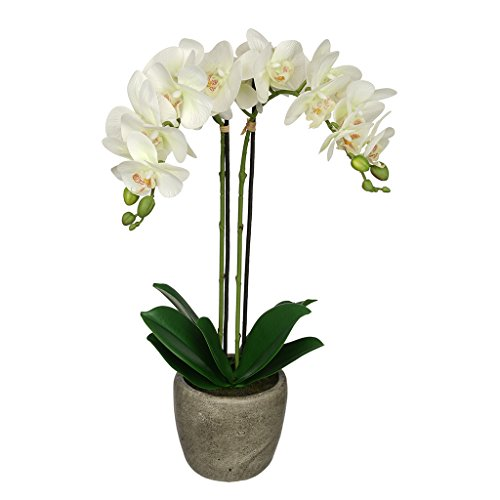 House of Silk Flowers Artificial Double-Stem Orchid in Grey Stone-Look Vase (Pearl White)