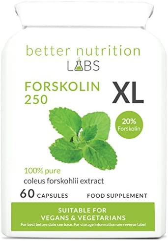 Forskolin XL -Ziernessel Forskohlii (20% Forskolin) Extrakt - Nahrungsergänzung -Von Better Nutrition Labs - 60...