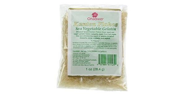 Welp Ohsawa Agar Kanten Flakes – Macrobiotic, Vegan and Gluten-Free - 1 YO-26
