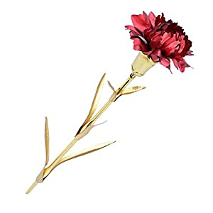 WETONG Yihao 24K Gold Carnation Gold Foil Decoration Artificial Rose Flowers in Gift Box, Pretty Red Rose as Gifts for Mother's Day, Valentine's Day, Wedding Day, Birthday,Home Decor(Red) 113