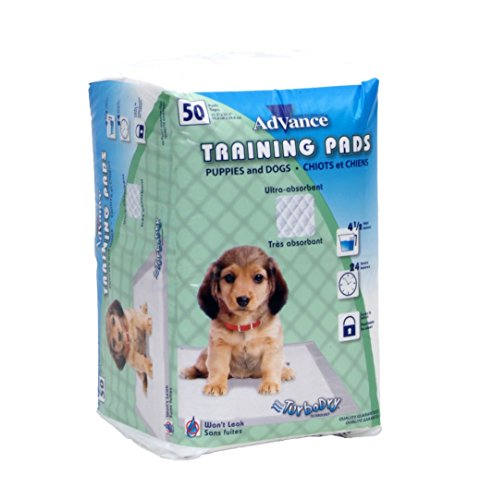 Coastal Pad Training - Advance Training Pads, 50 pk