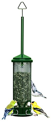 "41VdPfd3pRL - Squirrel Buster Mini 4.4""x4.4""x21"" (w/hanger) Wild Bird Feeder with 4 Metal Perches, 1.3lb Seed Capacity"