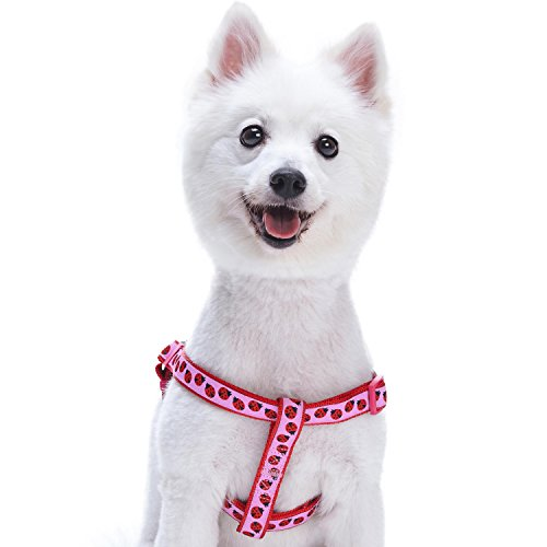 Blueberry Pet Step-in Ladybug Designer Dog Harness, Chest Girth 16.5 - 21.5, Small, Adjustable Harnesses for Dogs