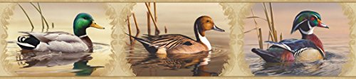 (Chesapeake HTM48521B Winnipeg Cream Waterfowl Portrait Wallpaper Border)