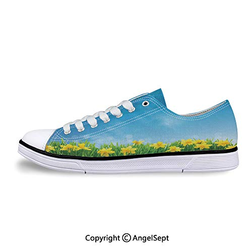 Unisex Canvas Lace-up Low Top Flat Shoes in Grass Field Sunny -