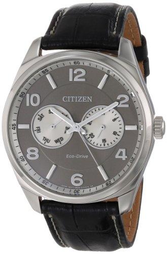 Citizen AO9020 17H Eco Drive Silver Tone Leather