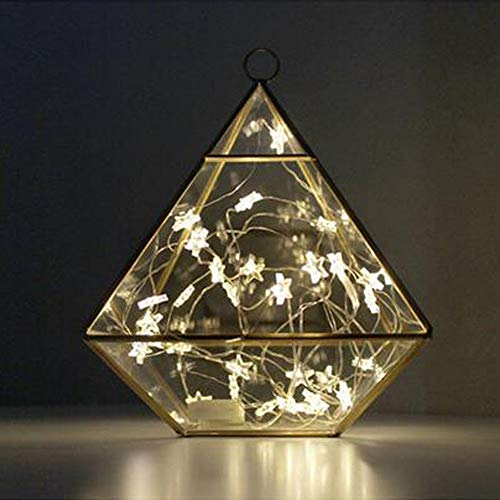 Tuscom Button Battery Pentagram Star Light Cozy String Fairy Lights for Xmas Window Bathroom Wedding Festival Holiday (3 Colors) (Yellow) by Tuscom@ (Image #3)