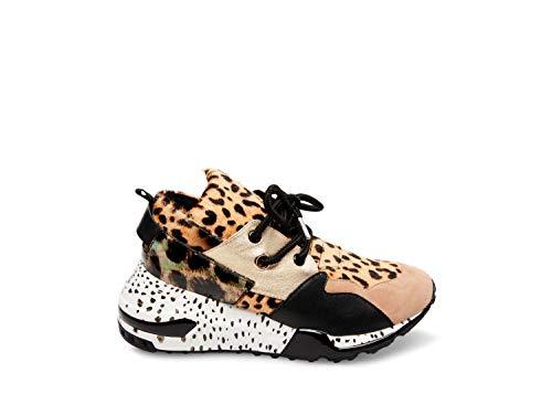 Steve Madden Women's Cliff Sneaker, Animal, 8 M US