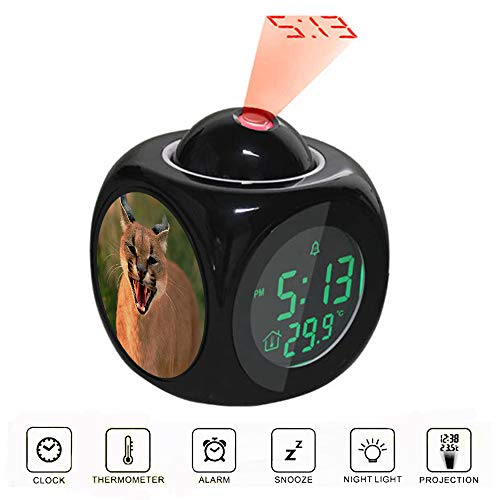 Projection Alarm Clock LCD Digital LED Display Talking with Voice Thermometer Function Desktop Close up Photo of Brown Wild Cat ()