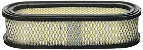 Stens 100-164 Briggs and Stratton 394019S Air Filter