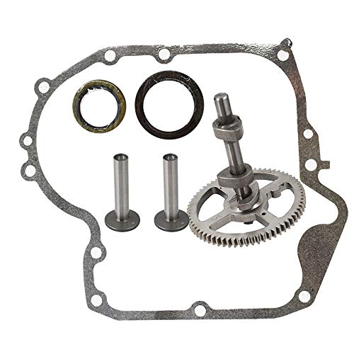 labwork 793880 New Camshaft Plus Sump Gasket 697110 for Briggs & Stratton 793880
