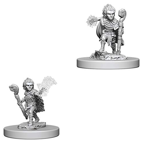Gnome Male Druid /& Gnome Female Druid Wiz Kids Pathfinder Battles Deep Cuts Miniatures Bundle