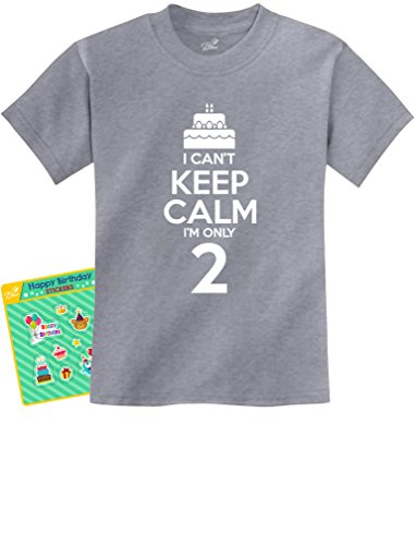 2nd Birthday Gift Can't Keep Calm I'm Two Birthday Cake 2 Year Old Kids T-Shirt 2T Gray