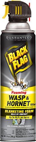 Black Flag HG-11089-1 Foaming Wasp & Hornet Killer Aeroso...