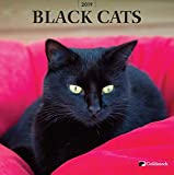 Goldistock -''Black Cats'' Eco-Friendly 2019 Large Wall Calendar - 12'' x 24'' (Open) - Thick & Sturdy Paper - Beautiful & Mysterious