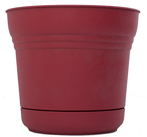Bloem SP0712 Saturn Planter, 7-Inch, Union Red - Apollo Plastic Deck Planters