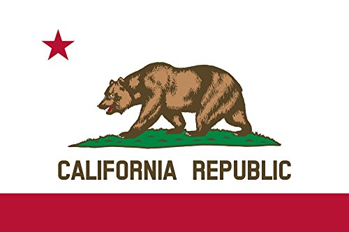 State of California Flag 3'x5' Polyester by SoCal Flags® Hi