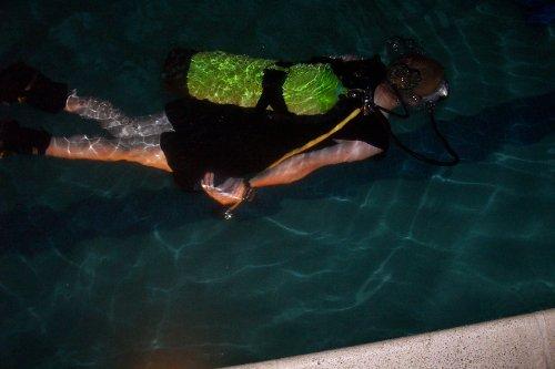 Diving business plan