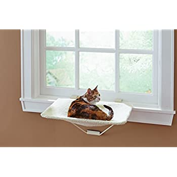Amazoncom TabbyNapper Cat Window Perch For Small Large