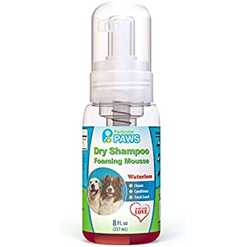 Particular Paws Dry Shampoo for Dogs - Waterless Foaming Mousse - Mango & Pomegranate - 8oz