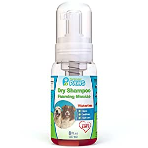 Dry Shampoo for Dogs - Waterless Foaming Mousse - Mango & Pomegranate - 8oz