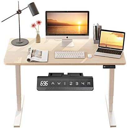 MAIDeSITe Dual Motor Standing Desk Electric Adjustable Stand Up Desk 48 x 24 Inches
