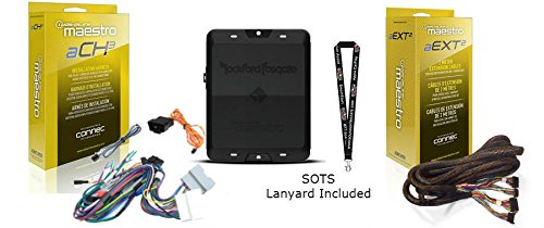 Rockford Fosgate DSR1 8-Channel Interactive Signal Processor w/ iDatalink Maestro Module & HRN-AR-CH3 Vehicle-specific amp replacement harness HRN-AR-EXT2 2-Meter Extension Cable and SOTS Lanyard