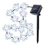MeiLiio Solar String Light 50 LED Flower Blossom Decorative Commercial Grade Ambiance Hanging Powered Fairy Lights for Wedding Yard Landscape Holidad Xmas Tree Festival Cafe (Cool White)