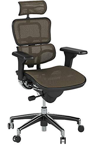 Eurotech Ergohuman Mesh Chair - High-Back Chair With Headrest - Copper