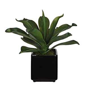 House of Silk Flowers Artificial Agave Succulent in Cube Ceramic 2