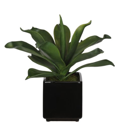 House-of-Silk-Flowers-Artificial-Agave-Succulent-in-Black-Cube-Ceramic