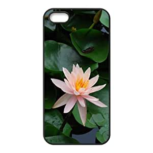 Okaycosama Funny IPhone 5,5S Cases Flower 50 Protective Cute for Girls, Iphone 5s Cases for Girls Cheap, {Black}