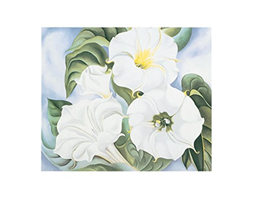 Georgia Okeeffe Jimson Weed (Jimson Weed 1935 by Georgia O'Keeffe Flower Floral Nature Print Poster 11x14)