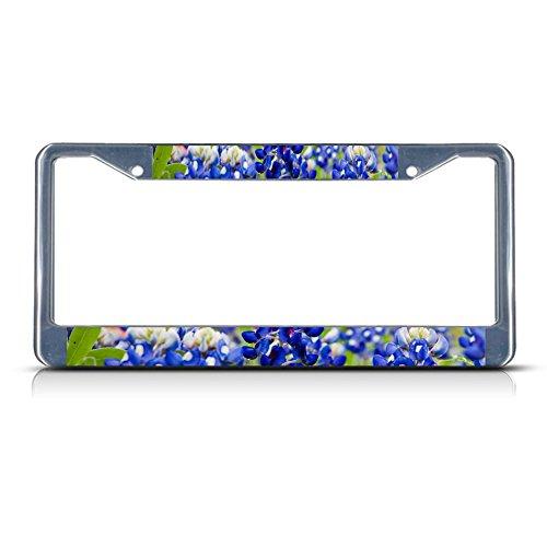 TEXAS BLUE BONNET Flower Chrome Metal License Plate Frame Tag Border (Flower License Plates)