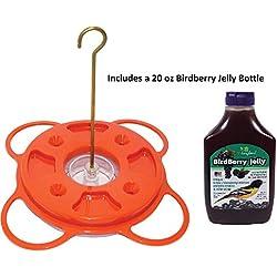 Birds Choice NP1009 Oriole-Fest Songbird Oriole Feeder, 12-Ounce with Grape Bird Berry Jelly 20 oz