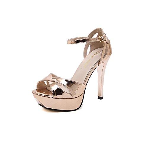 DALL Zapatos de Tacón Plataforma A Prueba De Agua de 3 Cm Zapatos De Mujer Tacones Finos Zapatos De Tacón Alto Zapatillas Sandalias 11.5cm De Alto (Color : La Plata, Tamaño : EU 39/UK6/CN 39) Oro