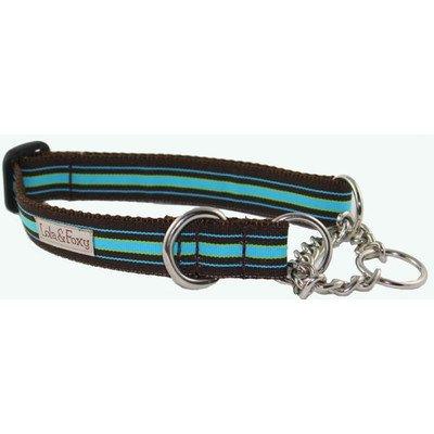 """Fiji Martingale Dog Collar Size: 1"""" X-Large"""