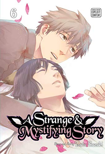 Pdf Graphic Novels A Strange and Mystifying Story, Vol. 6