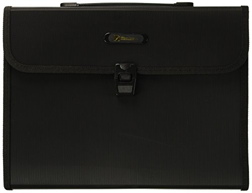 Wilson Jones Poly Expanding Brief File, 5.25 Expansion, 13 Pocket and Tabs, 12 x 10 Inches, Black (W91165A)