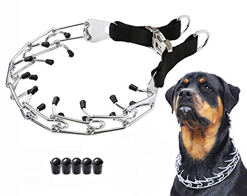 Mayerzon Dog Prong Training Collar, Stainless Steel Choke Pinch Dog Collar with Comfort Tips (Collar)