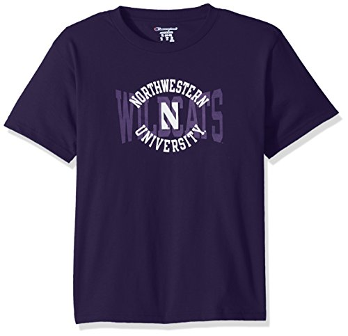 NCAA Northwestern Wildcats Youth Boys Jersey T-Shirt 1, Large, Purple