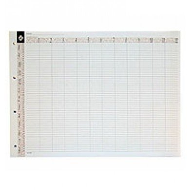 Agenda Marketing Loose Leaf Refill 12 Assistant (Am Personal Assistant Care)