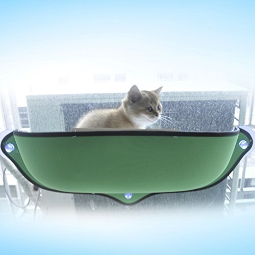 Amazon.com : Winnii Cat Hammock Window Mounted Cat Bed Hammock Sofa Mat Cushion Hanging Shelf Seat with Suction Cup (Green) : Pet Supplies
