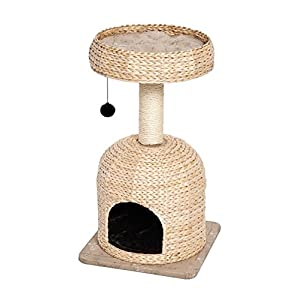 MidWest Homes for Pets Cat Tree |Scout Cat Furniture Cat Activity Tree w/Sisal Wrapped Support Scratching Posts & Dangle Play Balls, Woven Rattan & Script Small Cat Tree