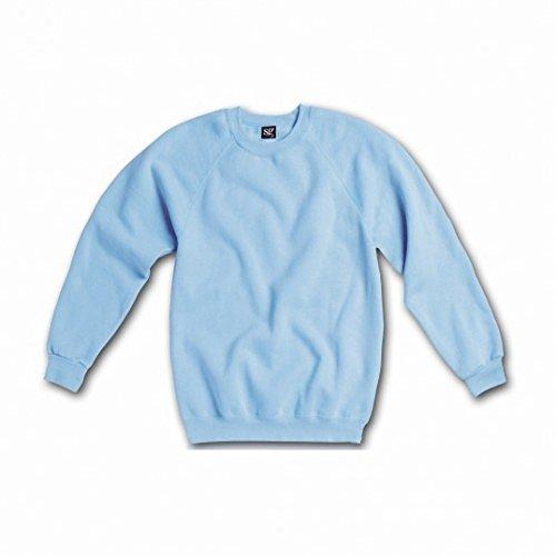 SG Ladies/Womens Raglan Sleeve Crew Neck Sweatshirt (L) (Sky Blue)