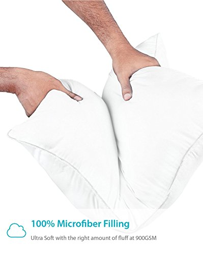 Equinox 2-Pack Bed Pillows - 20