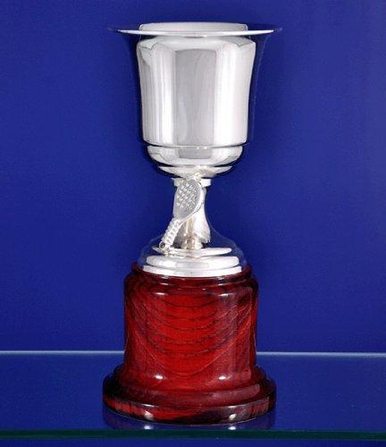 Alco 1515 - Copa de orfebrería de alpaca - Pádel, tamaño 16 (cm)