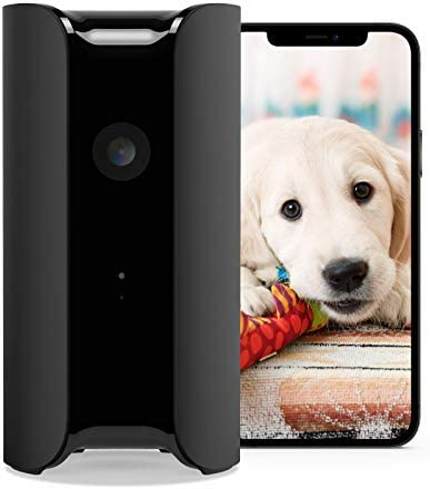 Canary View Indoor Home Security Camera with Premium Service (1 YR FREE Incl.)   1080p HD, 2-Way Talk, 30-Day Video History, Person Detection, One-tap to Police, Alexa, Google, Baby Monitor, WiFi IP