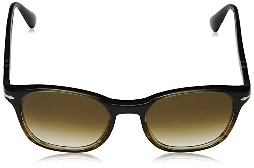 Brown Unisex Sol Persol Adulto Brown de Marrón Gafas Brownriped q4axxHwY