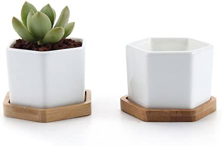 T4U 2.75 Inch White Ceramic Pots Hexagon Succulent Cactus Planter with Free Bamboo Tray for Home Decoration 1 Pack of 2